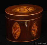 George III oval mahogany single compartment tea caddy inlaid with oval marquetry panels depicting shells.  The caddy has maple stringing. The velvet on the bottom looks original. The shading of the marquetry is achieved by dipping the maple in either hot molten lead or hot sand.